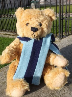 Cambridge Bear