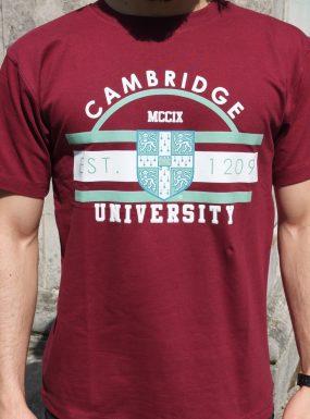 University of Cambridge Universal T-Shirt